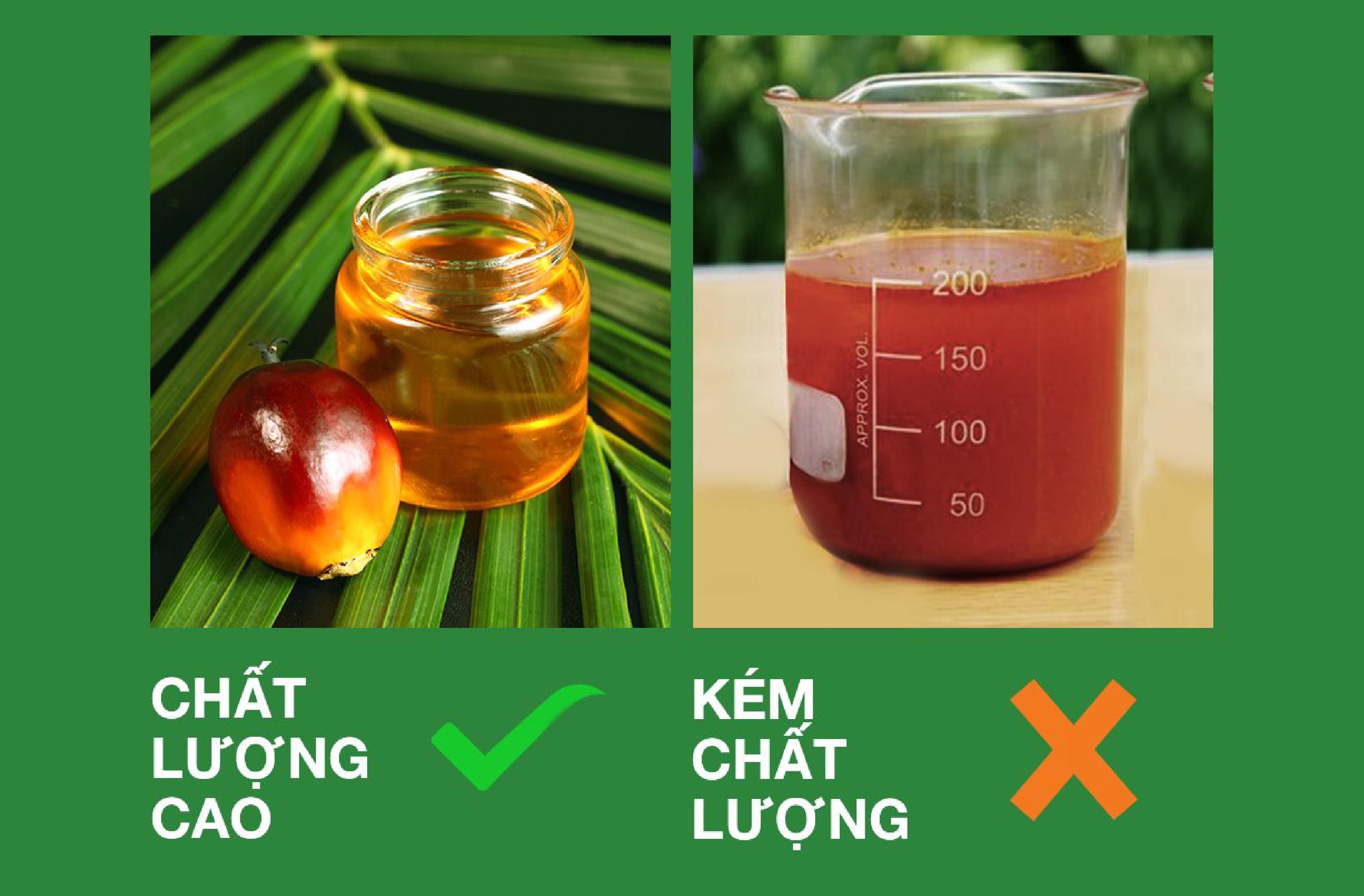 Làm thế nào để phân biệt tinh dầu cọ chất lượng cao và  kém chất lượng?